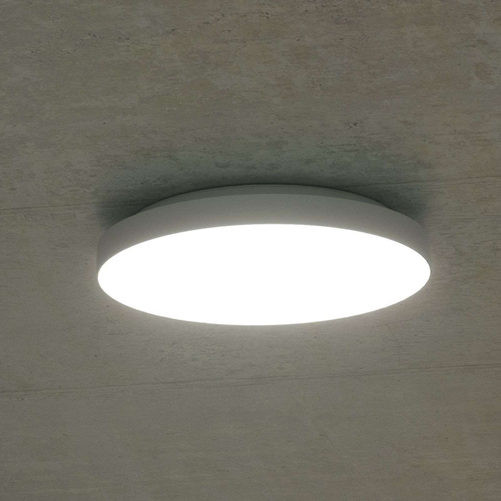 Plafón LED Rob, IP44 blanco universal