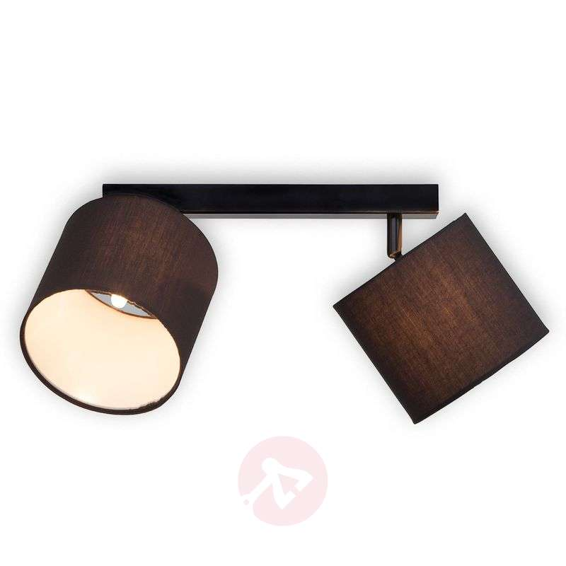 Image of 2-bulb ceiling lamp Sandra