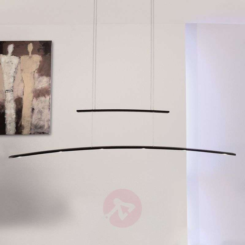 Image of The height-adjustable Arco LED hanging light
