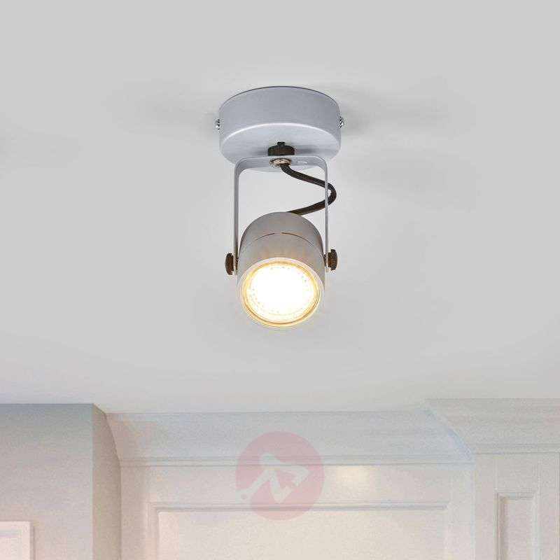 Spot 79 Wall and Ceiling Light 230 V Silvery Grey